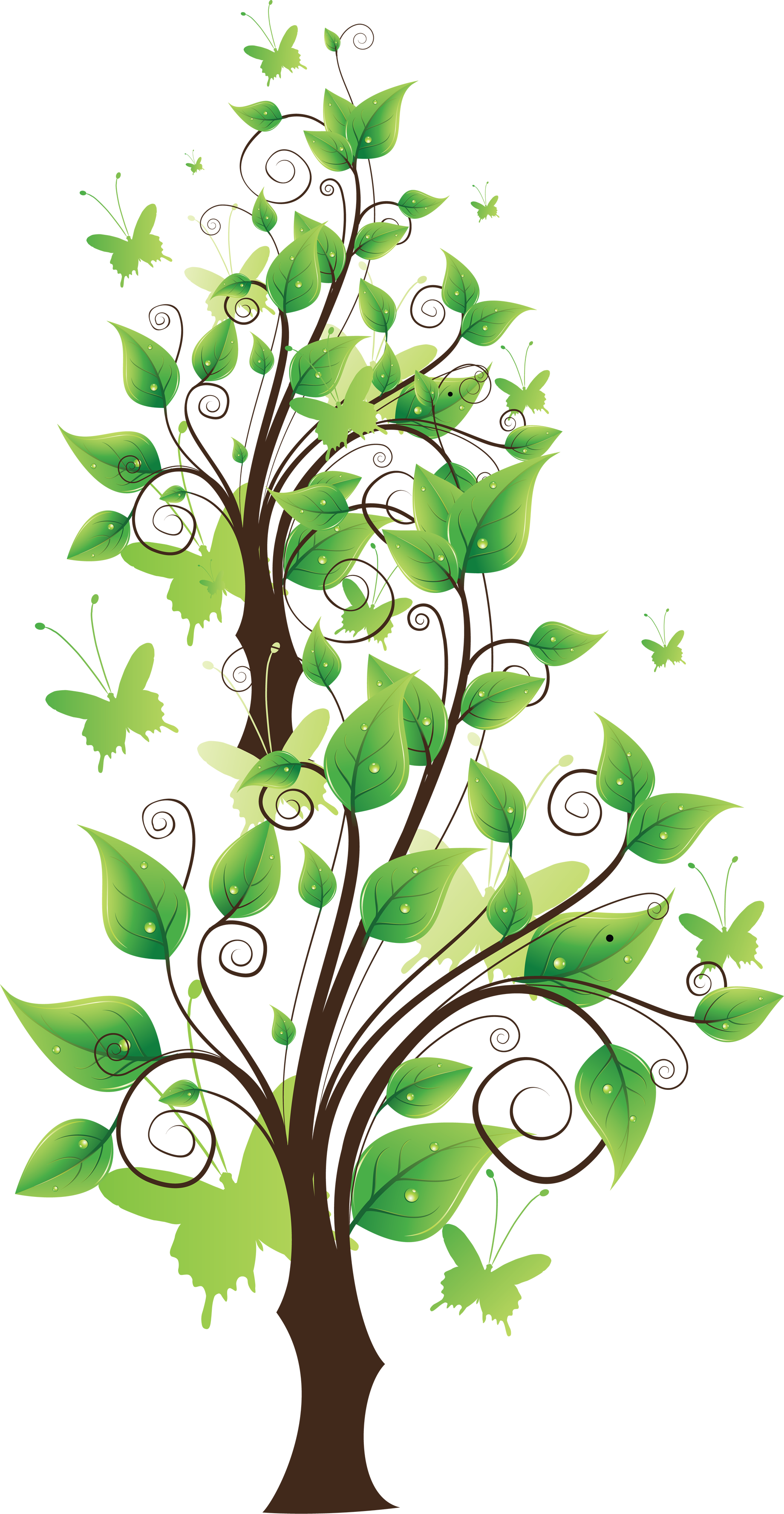 Bear Wall Stickers Tree Png Images Pictures Download Free