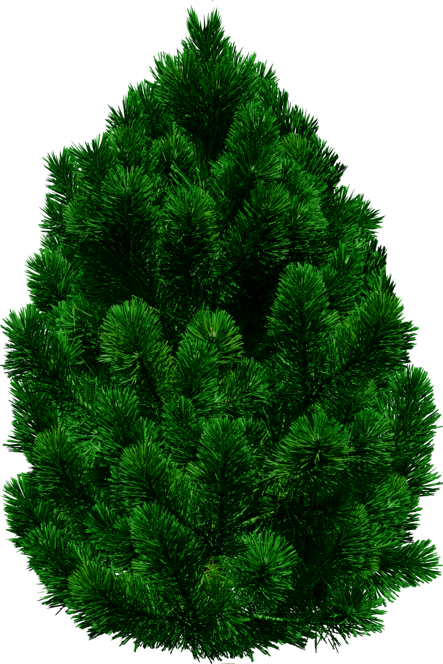tree png images  pictures  download free clip art pine tree border clip art pine trees with snow