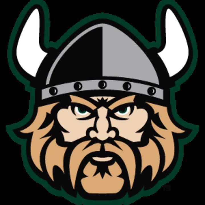 Viking head PNG