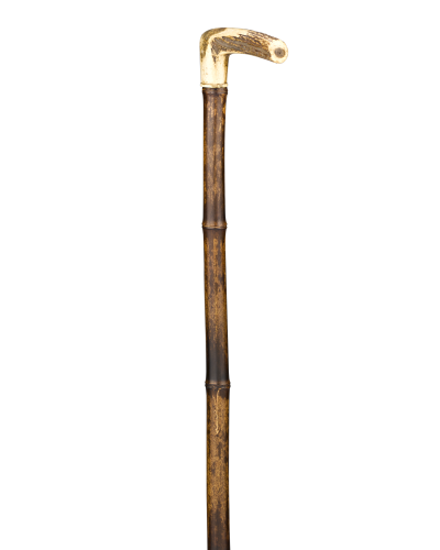 Walking stick PNG