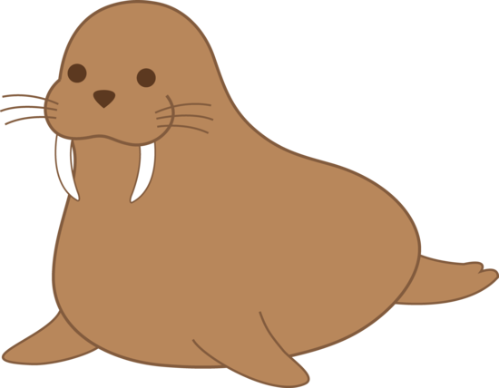 Walrus PNG