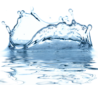 Water drops PNG image