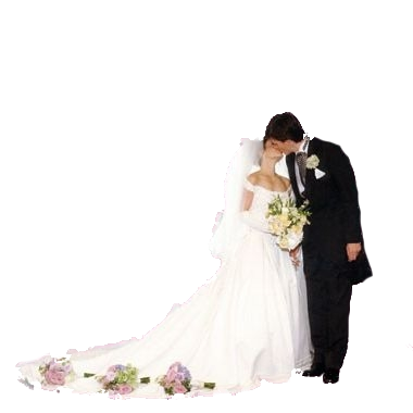 Wedding Couple Png