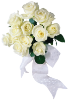 White roses PNG image