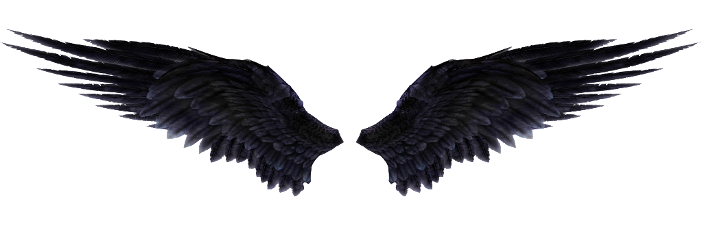 Wings PNG