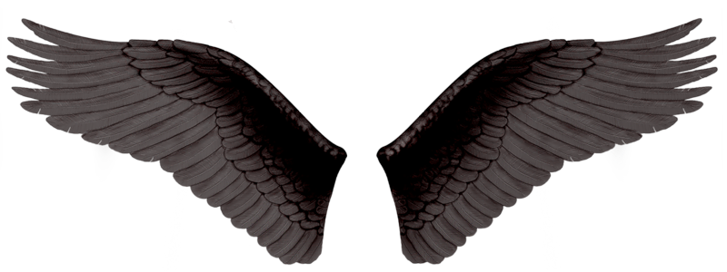 Black evil wings PNG