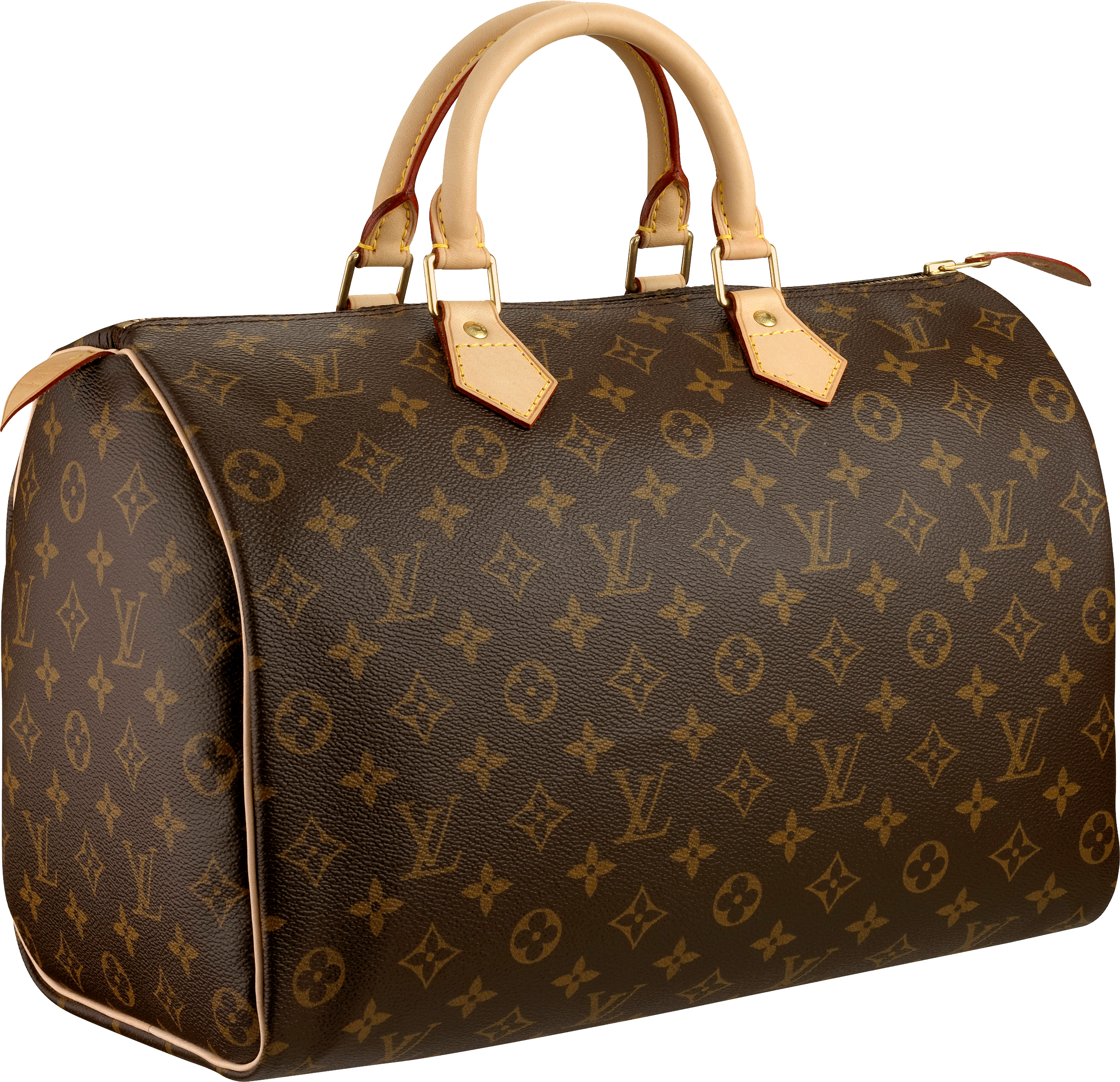 Louis Vuitton Women bag PNG image